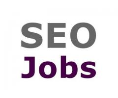 SEO Expert - 1 Year exp required