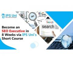 Become an SEO Executive in 8 Weeks via IPS Uni's Short Course