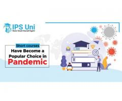 Short courses Have Become a Popular Choice in Pandemic