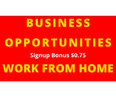 Business Opportunities | Work From Home