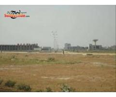 1 Kanal Amazing Plot Is Available For Sale In Dha Phase 6